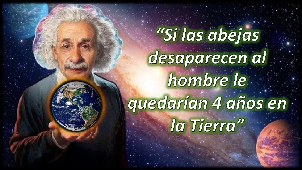 Albert-Einstein-41