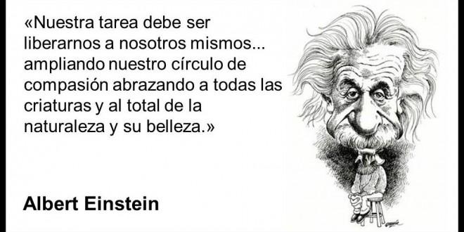 Albert-Einstein-49