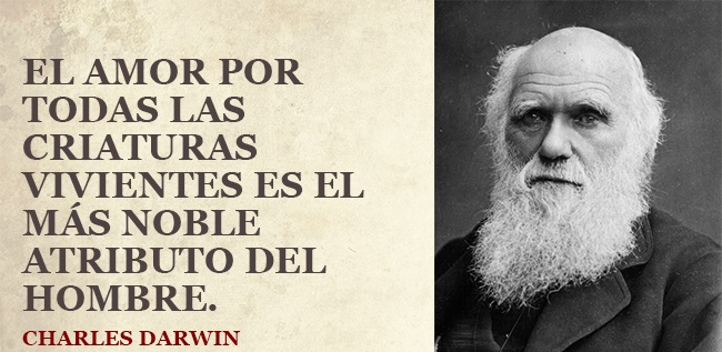 Charles-Darwin-18