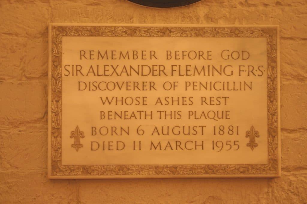 alexander-fleming-13