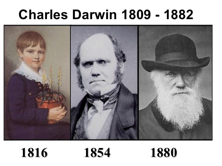Charles-Darwin-2