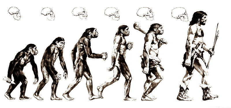 Charles-Darwin-21