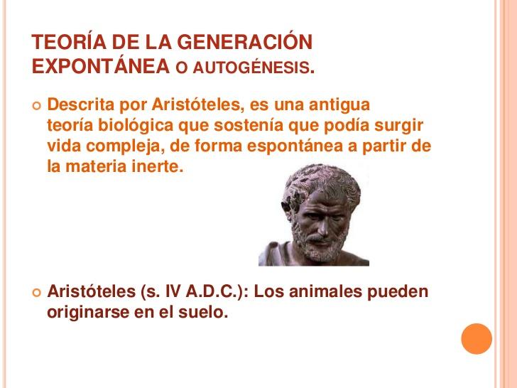 Aristóteles-13