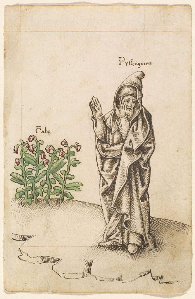 pitagoras-19